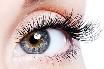 MD Lash Factor в интернет магазине